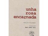 UNHA ROSA ENCARNADA